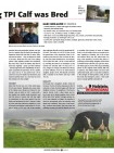 Article Holstein International 02/15 Page 2