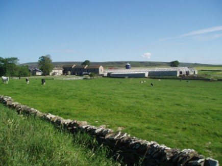 Washfold Farm