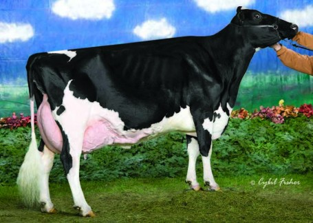 Amlaird Lee Alice EX-92-USA