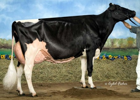 Rainyridge Talent Barbara *RC EX-95-USA