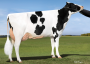 Pine-Tree 5092 Sym 5946-ET *RC VG-85-USA